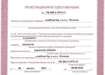 AdiSalmoSol RUS
