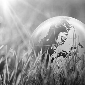05 ADIFEED GLOBALNIE