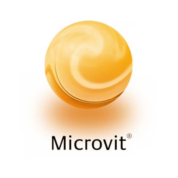 microvit logo